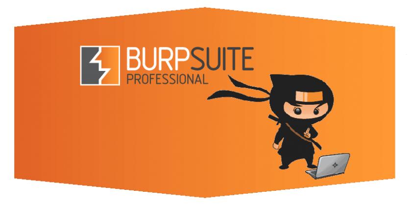 نرم افزار Burp Suite چیست؟