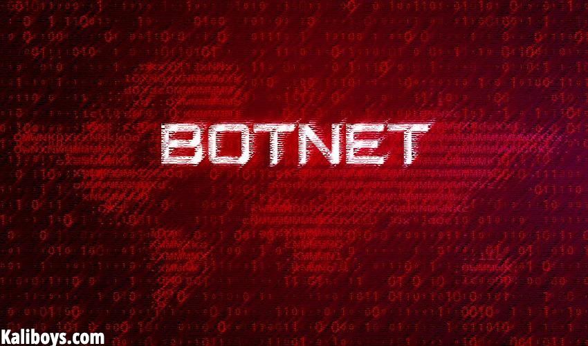 what is botnet